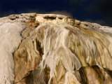 Canary Springs at Mammoth Hot Springs  Yellowstone National Park  Wyoming  USA