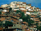 Shanty Houses on the Outskirts of Town  Caracas  Venezuela