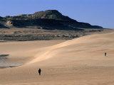 Western Desert Between Siwa and Bahariya  Siwa  Egypt