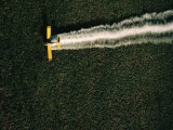 Aerial View of a Crop Duster Spraying a Field of Sugar Beets