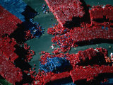 Aerial View of Thousands of Red and Blue Crates in a Storage Depot  Melbourne  Australia