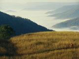 Mountain Biking Through Fields Above Fog-Shrouded Elk River Valley
