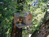 Church Bird House Hanging in a Tree  Sutter Creek  California