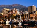 Waterfront with Mt Wellington Behind  Hobart  Tasmania  Australia
