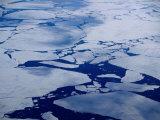 Artic Ice Floes  Nunavut  Canada