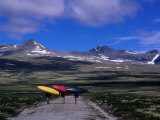 Kayakers Walking to Ula River  Rondane National Park  Oppland  Norway