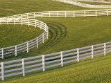 Lexington  Kentucky  USA