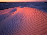 Sand Dunes  Nambung National Park  Western Australia  Australia