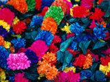 Paper Floral Garlands  Rajasthan  India