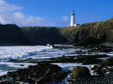 Lighthouse in Yaquina Head Natural Area  USA