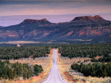 Bears Ears Buttes from Cedar Mesa  Moki Dugway Road  Manti-La Sal National Forest  USA