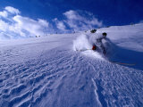 Skier Descending in Powder Snow  St Anton Am Arlberg  Vorarlberg  Austria