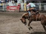 Calgary Stampede  Stampede Park  Calgary  Alberta  Canada
