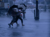 Typhoon Force 8 Hits Pedestrians in the Street  Kowloon  Hong Kong  China