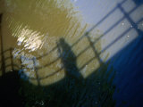 Shadow of a Person Walking Across Bridge on Canal Water  Amsterdam  Netherlands