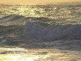 Ocean Wave  Playa Del Carmen  Mexico