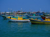 Colorful Fishing Boats  Alexandria  Egypt