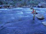 Mature Man Fly-Fishing  West Walker River  CA