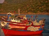 Fish Boats on Wharf  Assos  Turkey