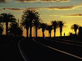 Sunset on Tram Tracks of St Kilda Esplanade  Melbourne  Australia