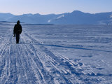 Local Walking Through Arctic Landscape Carrying Gun for Protection  Svalbard