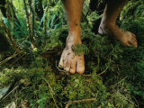 Close View of Bare Feet on Moss-Covered Soil