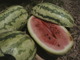 Close View of Ripe Watermelons  One Split in Half to Show Color