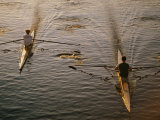 Two Rowers Paddle Down the Charles River in the Morning Sunlight