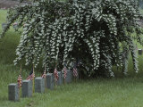 Union Army Tombstones with American Flags at Fredericksburg