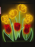 Neon Tulips and Irises Brighten up a Display Window