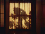 View Looking Through a Screen in a Japanese Inn