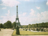 View of the Eiffel Tower from a Park