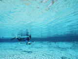 A Diver Swims Through Clear Blue Water
