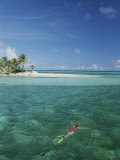 A Lone Snorkeler Floats in Waters off a Palm Tree-Dotted Island