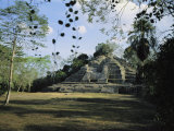 A Mayan Temple Ruin in Belize