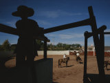 A Silhouetted Cowboy Watches Riders in a Ring