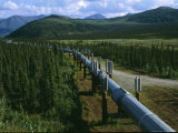 The Trans-Alaska Pipeline Runs Through the Alaskan Wilderness