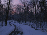 Dawn View of a Snow-Covered Road