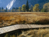A Boardwalk Crosses a Dry Meadow in Yosemite Valley