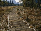 A Boardwalk Crosses a Dry Meadow in Yosemite Valley