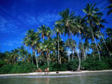 One of Many Palm Fringed Beaches on Tindare Island  Togos Os Santos Bay  Itaparica  Brazil