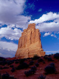 Courthouse Tower Natural Sandstone Edifice  Arches National Park  Utah  USA