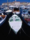Fishing Boats in Harbour  Rovinj  Croatia
