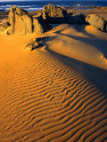 Sand Dunes on Tarkine Coast  Tarkine  Australia