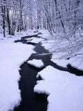 Snow Almost Covering Skaran Creek  Sodersen National Park  Sweden