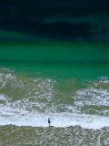Surf Fisher  Torquay  Australia