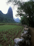 Rock Wall and Farm Fields Along the Li River  Guilin  Guangxi  China