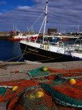 Nets on Howth Harbour  Dublin  County Dublin  Ireland  Leinster