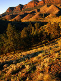 Section of Aroona Valley  Flinders Ranges National Park  Australia