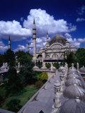 Roof of Suleymaniye Mosque  Istanbul  Turkey